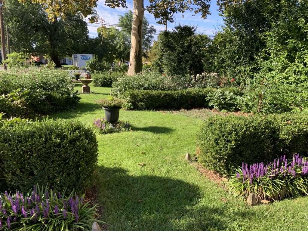 Urban Gardens in late summer.